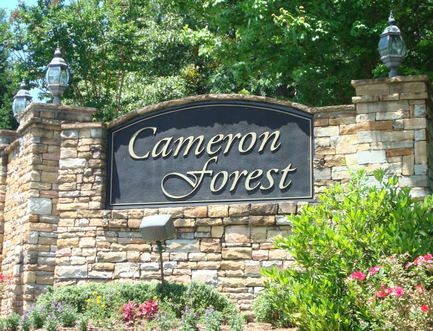 Cameron Forest.JPG